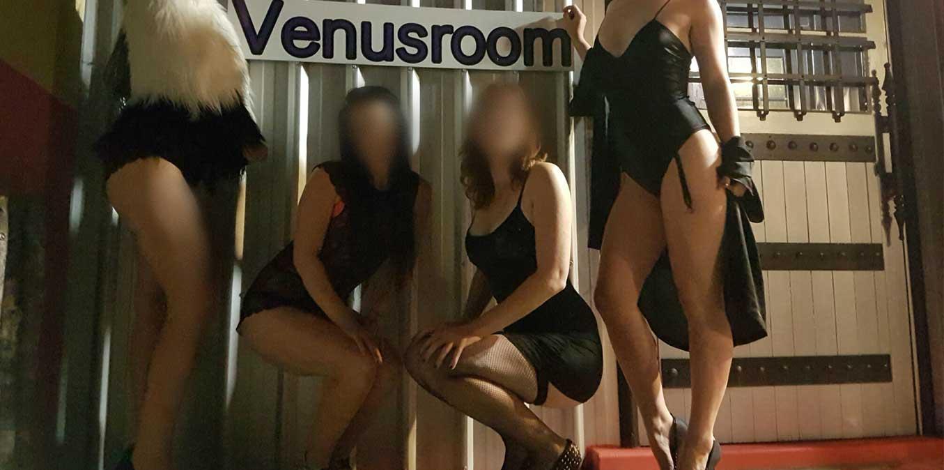 Venusroom escorts